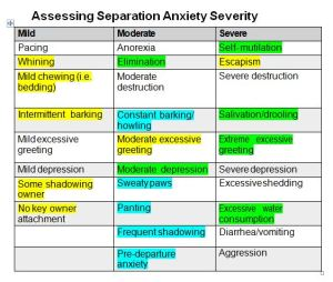 Assessing Separation Anxiety Severity